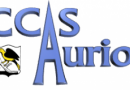 Permanences au CCAS : HANDI'AID