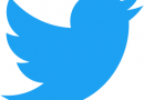 Lancement du compte Twitter