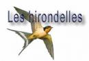 Les évènements de l'association les Hirondelles d'Auruou
